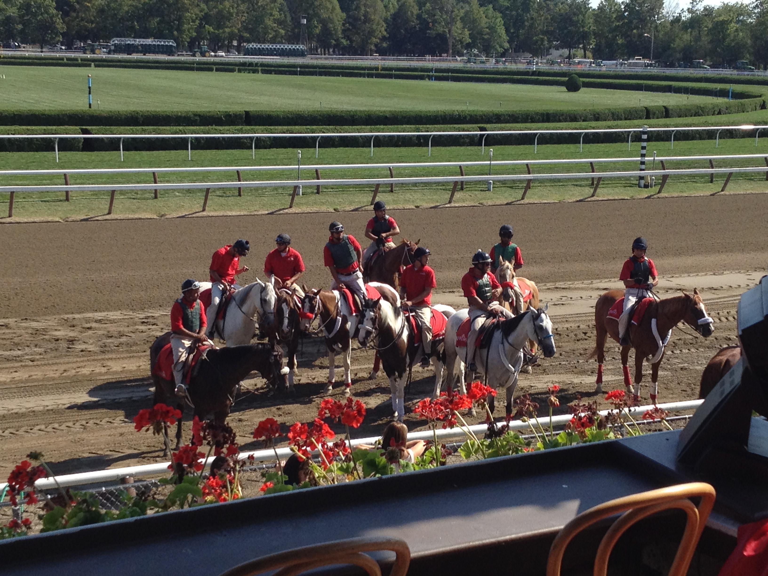 Helper Horses at Saratoga Racetrack