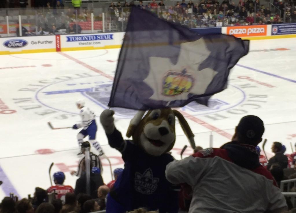 Duke at a Toronto Marlies Game