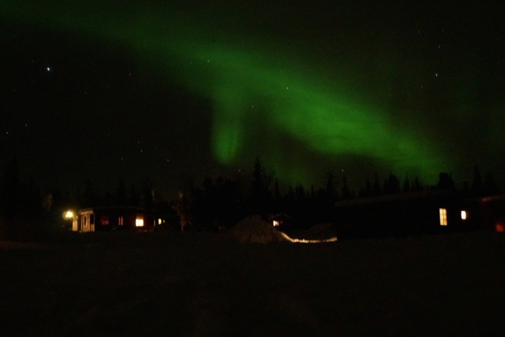 Northern Lights from Our Camp